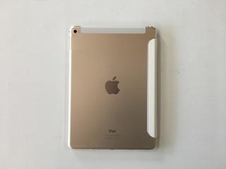 5_iPad_image .JPG