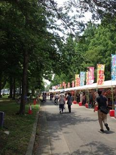 水元公園菖蒲祭り