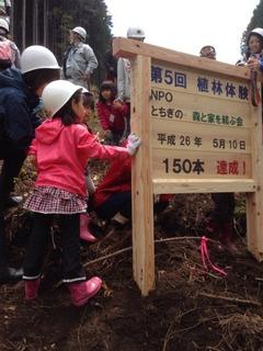 150本の杉植林記念ボード